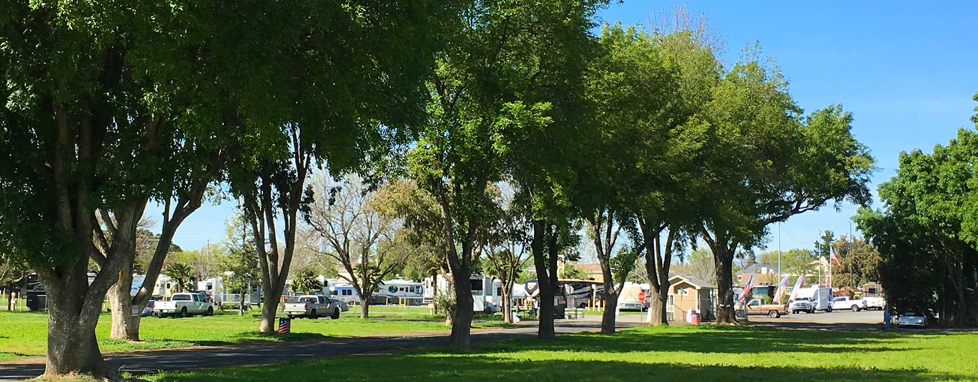 The Fairpark Rv At Alameda County Fairgrounds In The